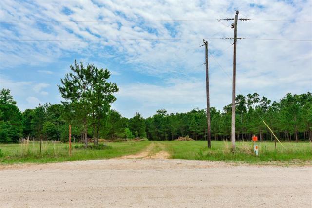 17860 Deer Way, Conroe, TX 77303 (MLS #6952565) :: The SOLD by George Team