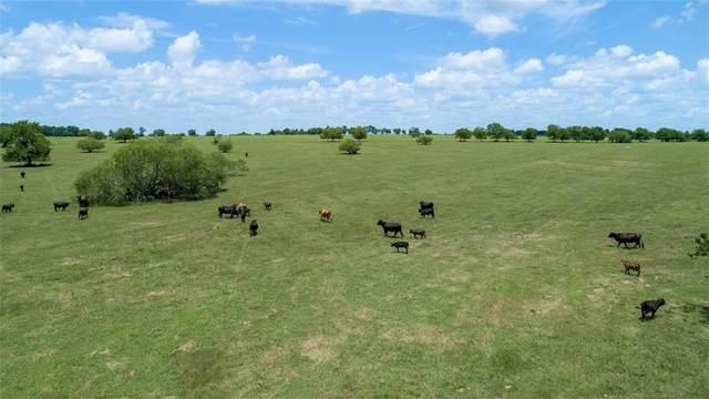 0360 County Road 446, Navasota, TX 77868 (MLS #69569087) :: Michele Harmon Team