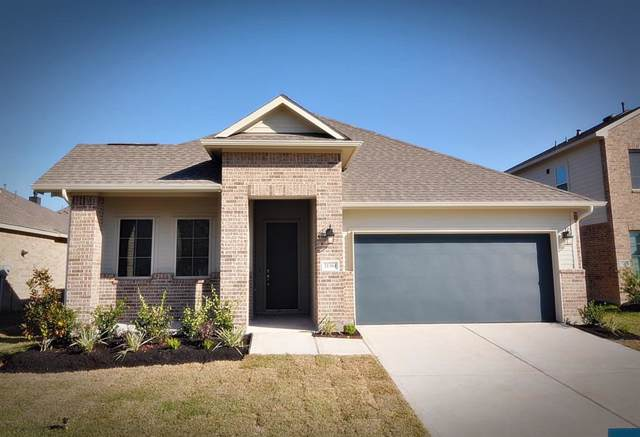 21304 Somerset Shores Crossing, Kingwood, TX 77339 (MLS #69598323) :: The Parodi Team at Realty Associates