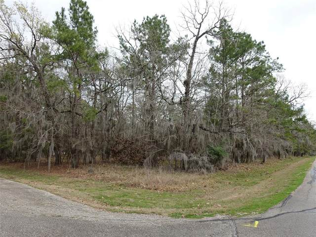 2 Lords Circle, Coldspring, TX 77331 (MLS #69642158) :: Connect Realty