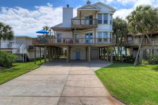 4115 Buccaneer, Galveston, TX 77554 (MLS #69657610) :: Connect Realty