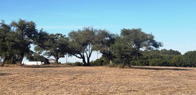 00 County Road 1255 Tract 6, Lampasas, TX 76550 (MLS #6966824) :: The SOLD by George Team