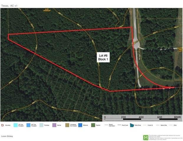 0 E Fork Drive, Huntsville, TX 77340 (MLS #6968964) :: My BCS Home Real Estate Group