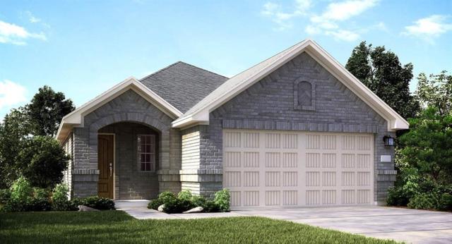 25606 Bottlebrush Sledge Street, Katy, TX 77493 (MLS #69712501) :: The SOLD by George Team