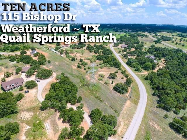 115 Bishop Drive, Weatherford, TX 76088 (MLS #69735635) :: Keller Williams Realty