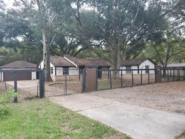 11918 Trickey Road, Houston, TX 77067 (MLS #6975254) :: The Bly Team