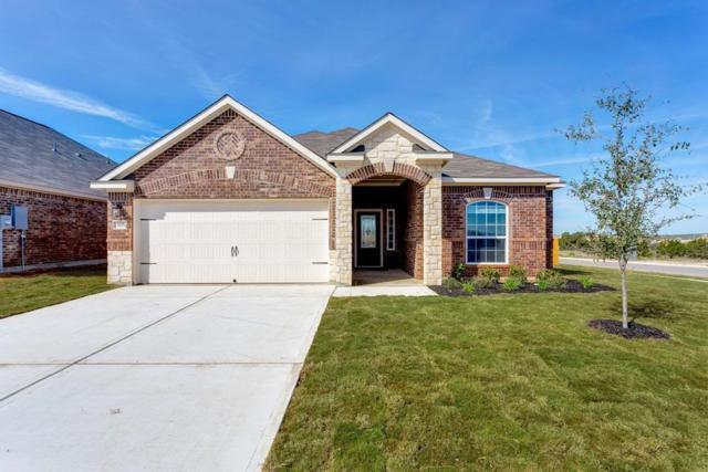 21202 Opal Oak Drive, Hockley, TX 77447 (MLS #69809055) :: The Heyl Group at Keller Williams