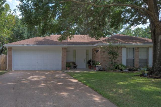 6911 River Mill Drive, Spring, TX 77379 (MLS #69846517) :: Giorgi Real Estate Group
