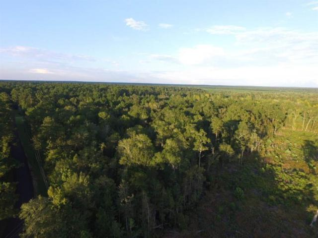 000 County Road 153, Jasper, TX 75951 (MLS #69969156) :: Connect Realty