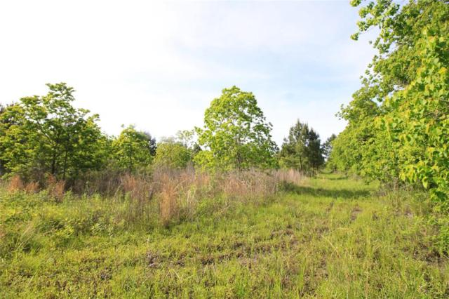 32 Acres Huffman Eastgate Road, Huffman, TX 77336 (MLS #69978268) :: The Heyl Group at Keller Williams