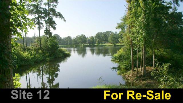 12 NE Smith Loop S, Romayor, TX 77327 (MLS #70058585) :: Giorgi Real Estate Group
