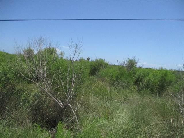 000 Tarpon, Sargent, TX 77465 (MLS #7008139) :: Green Residential