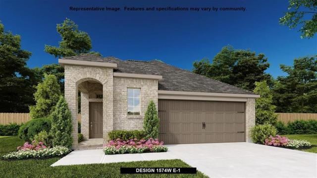 234 North Carson Cub Court, Montgomery, TX 77316 (MLS #70103148) :: The Home Branch