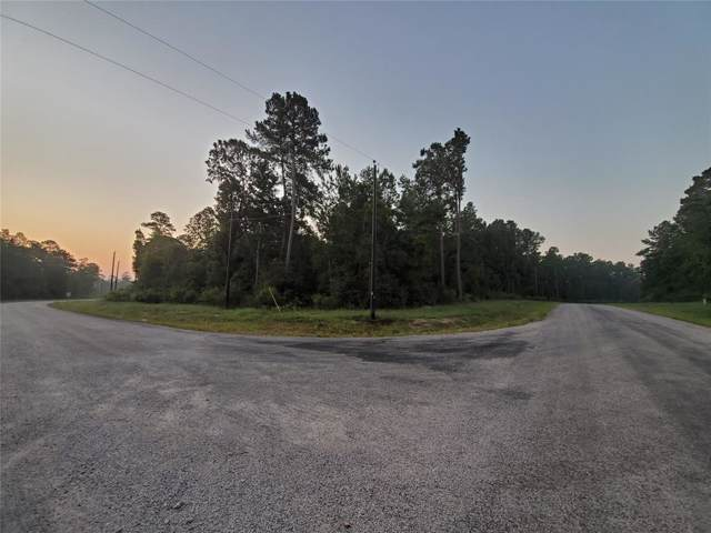 TBD Bluebonnet Road, Huntsville, TX 77340 (MLS #70132694) :: The SOLD by George Team