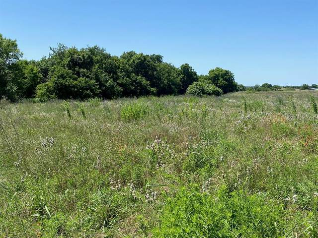 15.69 Acres County Road 316-A, Navasota, TX 77868 (MLS #70138104) :: Connect Realty