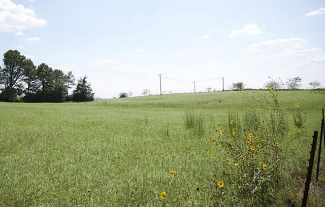 1 Loop 497, Bellville, TX 77418 (MLS #7023001) :: Ellison Real Estate Team