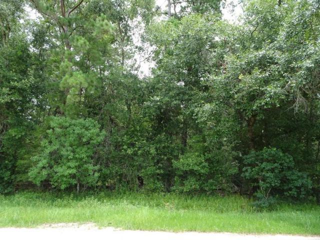 Lot 23 County Road 2191, Cleveland, TX 77327 (MLS #70237640) :: Krueger Real Estate