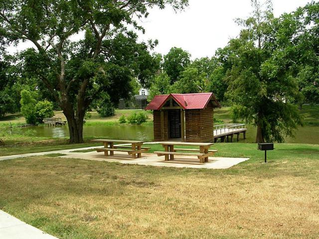 30911 Lower Oxbow Trace, Fulshear, TX 77441 (MLS #70252956) :: Green Residential