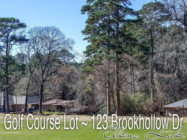 123 Brookhollow Drive, Huntsville, TX 77340 (MLS #70277301) :: The Heyl Group at Keller Williams