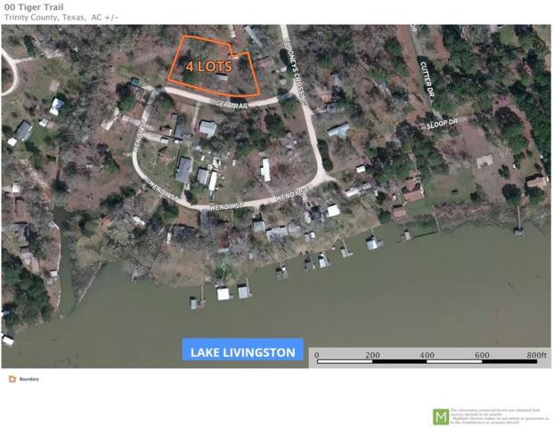 00 Tiger Trail, Trinity, TX 75862 (MLS #70345259) :: Fairwater Westmont Real Estate