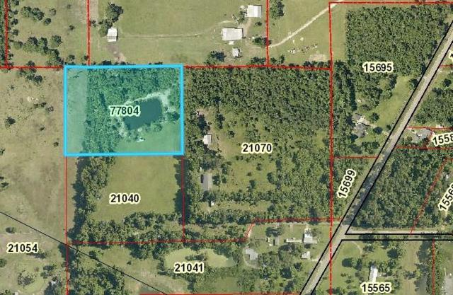 TBD Hamons Road, Batson, TX 77519 (MLS #70475040) :: Lion Realty Group / Exceed Realty