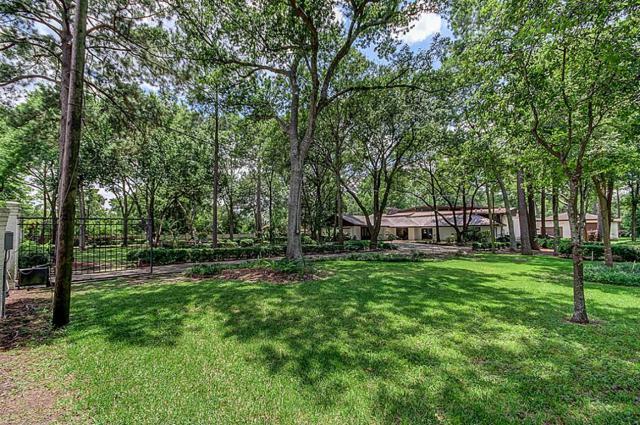 58 Rollingwood Drive, Houston, TX 77080 (MLS #7059305) :: See Tim Sell