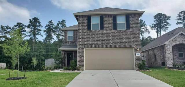 18992 Cicerone Ct, New Caney, TX 77357 (MLS #70594537) :: The SOLD by George Team