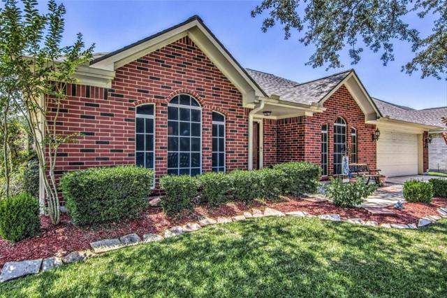 9506 Dry Desert Way, La Porte, TX 77571 (MLS #7059511) :: Magnolia Realty