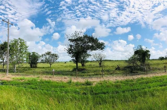 0 Fm 521 Road, Angleton, TX 77515 (MLS #70643830) :: Christy Buck Team