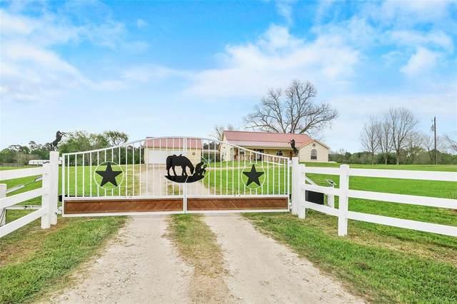 166 Winters Ranch Road, New Waverly, TX 77358 (MLS #70868807) :: The Parodi Team at Realty Associates