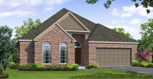 18814 Iris Mills Lane, Cypress, TX 77429 (MLS #7091066) :: The SOLD by George Team
