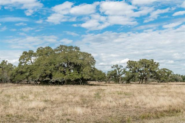 0 County Road 2104, Columbus, TX 78934 (MLS #70922697) :: Magnolia Realty