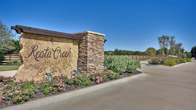 101 Valley Springs, Hempstead, TX 77445 (MLS #71047647) :: The Home Branch