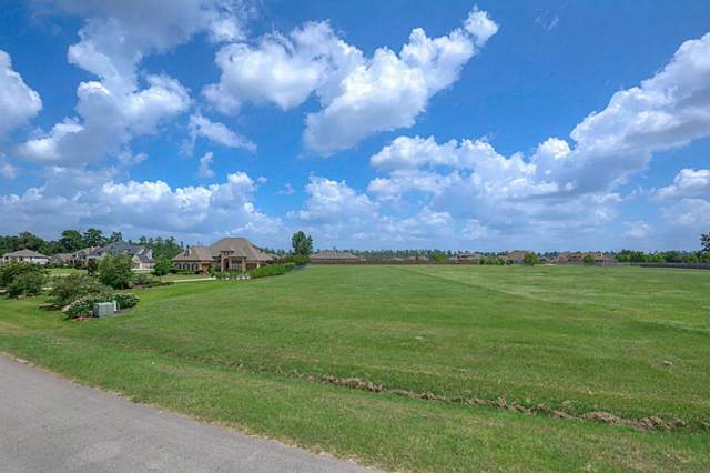 11696 Grand View Drive, Montgomery, TX 77356 (MLS #71161145) :: The Home Branch