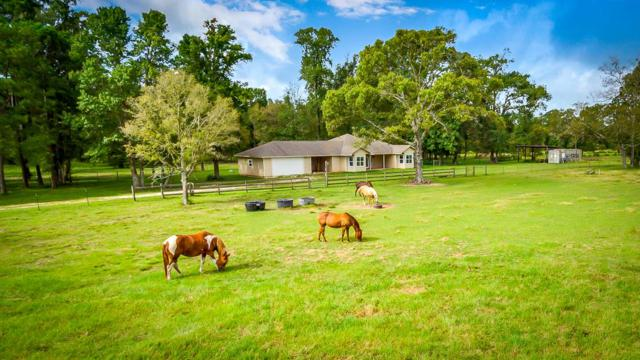 690 Ellisor Road, New Waverly, TX 77358 (MLS #71235250) :: Mari Realty