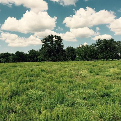 1626 County Rd 101, Boling, TX 77420 (MLS #71267888) :: Green Residential