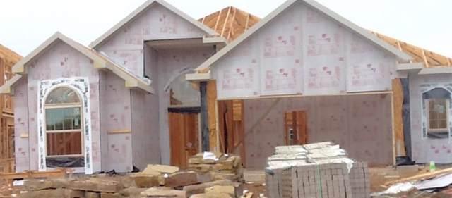4047 Siderno Drive, Missouri City, TX 77459 (MLS #71309736) :: Texas Home Shop Realty