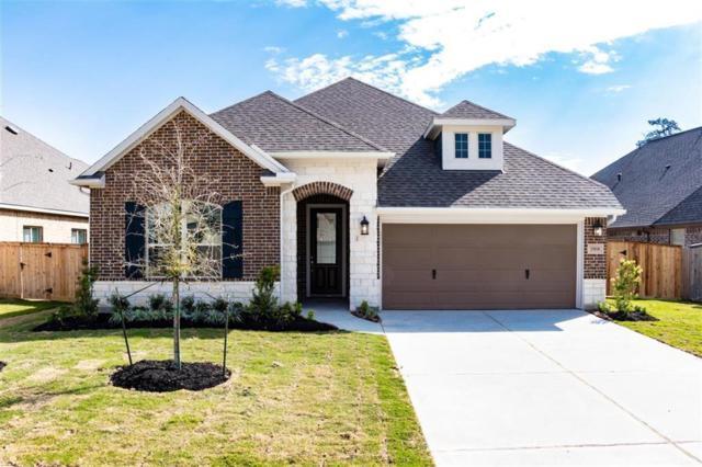 25010 Mountclair Hollow Lane, Tomball, TX 77375 (MLS #71328771) :: Giorgi Real Estate Group