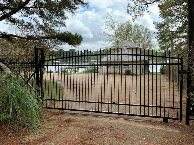 23184 Edgewater Drive, Berryville, TX 75763 (MLS #71353545) :: Bray Real Estate Group