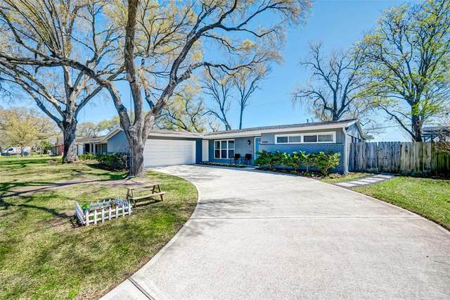11519 Gaymoor Drive, Houston, TX 77035 (MLS #71372839) :: Christy Buck Team