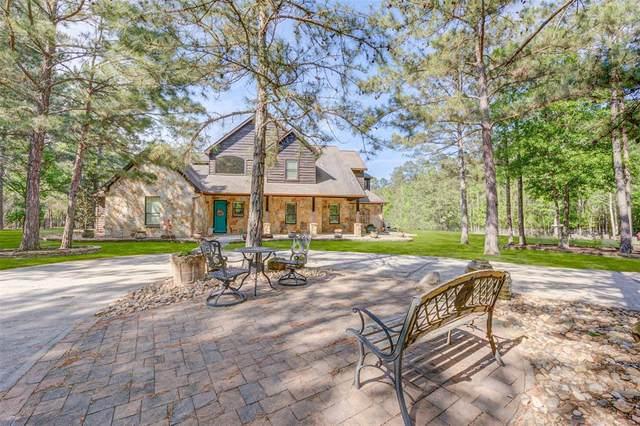1175 Hunters Creek Way, Hockley, TX 77447 (MLS #7140431) :: Michele Harmon Team