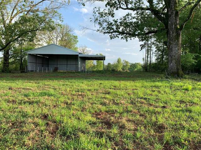 TBD County Road 1490, Center, TX 75935 (#7146951) :: ORO Realty