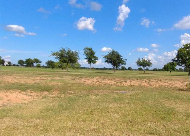 2001 Eagle View Drive, Navasota, TX 77868 (MLS #71496501) :: The Home Branch