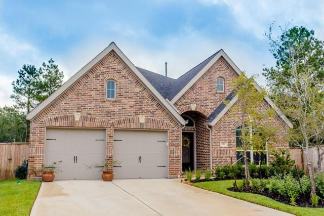 203 Sunrise Haven Drive, Montgomery, TX 77316 (MLS #71609757) :: The Home Branch