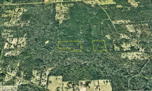 0 W Of Faulkner Rd, Cleveland, TX 77328 (MLS #7161089) :: The Bly Team