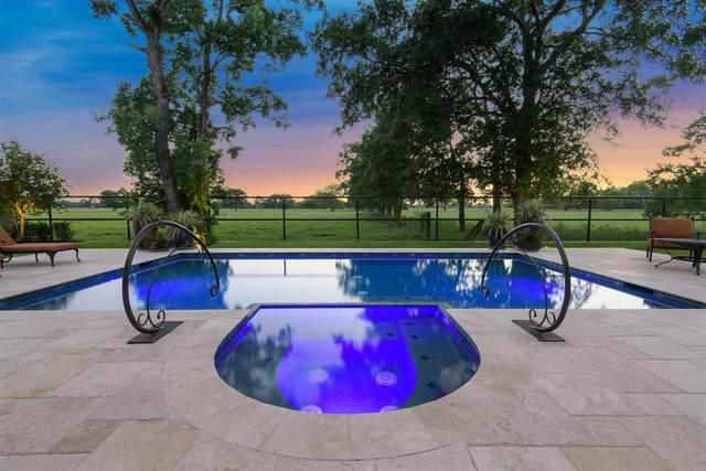 20125 W Hachita Circle, Spring, TX 77379 (MLS #71613770) :: Bay Area Elite Properties