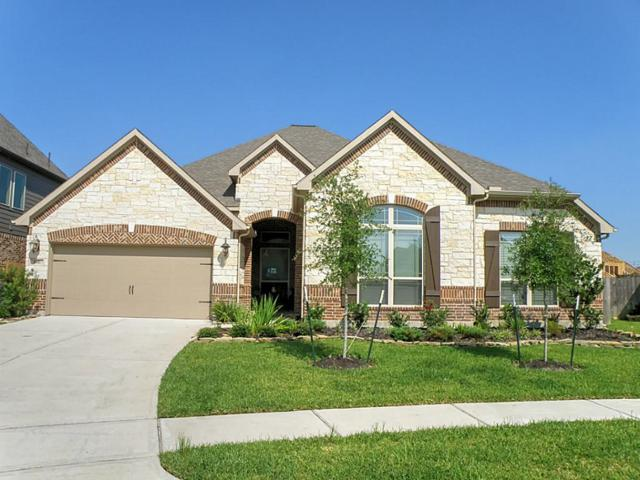 1517 Dusty Rose Court, Friendswood, TX 77546 (MLS #7164353) :: REMAX Space Center - The Bly Team