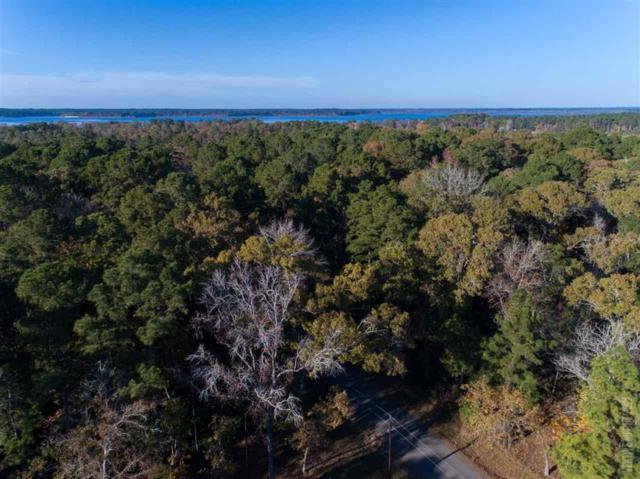 02 County Road 219/Mill Creek Acres, Brookeland, TX 75931 (MLS #71673679) :: Connect Realty