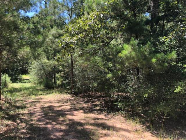0 Nichols Sawmill Road, Magnolia, TX 77355 (MLS #71676238) :: The SOLD by George Team