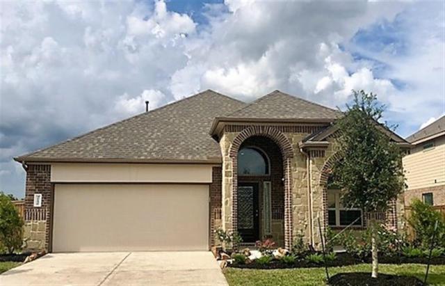 31126 Cypress Pasture, Hockley, TX 77447 (MLS #71733228) :: Texas Home Shop Realty